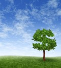Financial growth and success on a green summer landscape with a single tree in the shape of a dollar sign on a rolling grass hill with a blue sky with clouds sh