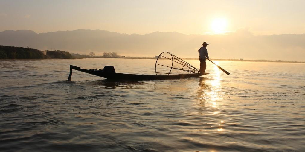 fishfinder archives - blogtrepreneur - for busy entrepreneurs, Fish Finder