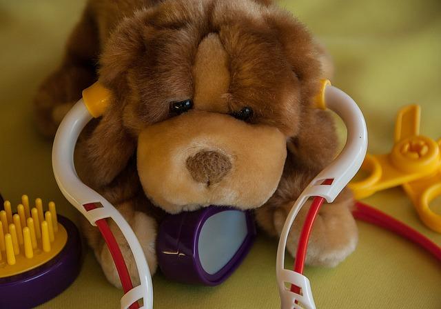 Best stethoscope for nursing students