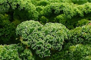 ketogenic diet plan Kale