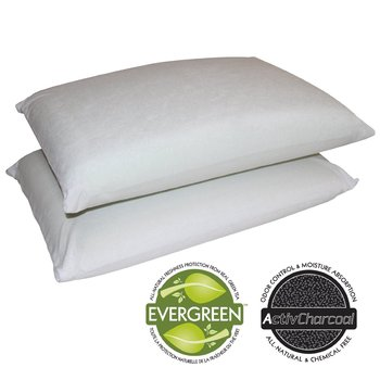 sleep_master_2-pack_traditional_memory_foam_pillows