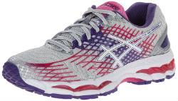 ASICS Womens GEL-Nimbus 17 Running Shoe