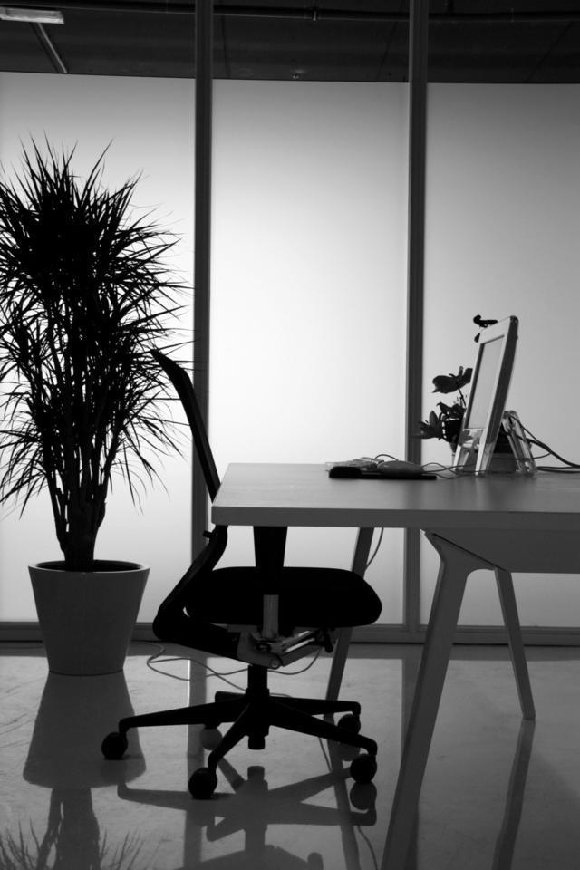 Best Ergonomic Office Chairs Under 300