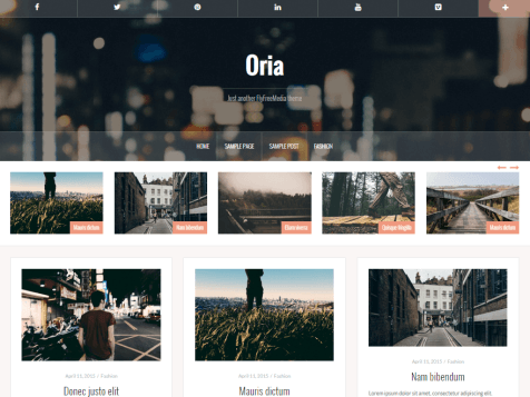 free portfolio wordpress themes oria
