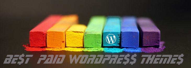 best paid WordPress themes
