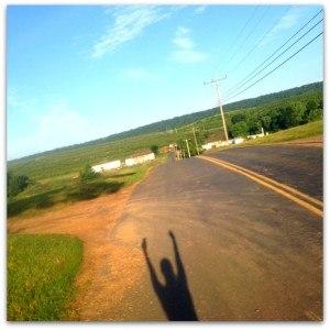 The Lone Runner