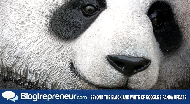 Beyond the Black and White of Google's Panda Update