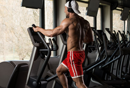 how to build muscle mass at home
