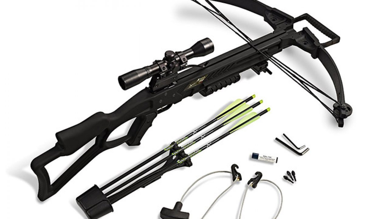 Compound Bow vs Crossbow: Pros and Cons